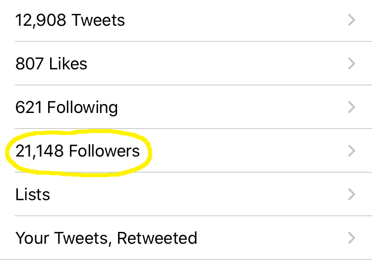 Twitter followers on Echofon